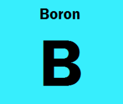 NUTRIENTS A-Z:  Boron